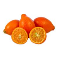 Mandarinquats