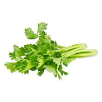 Tiny Celery-2