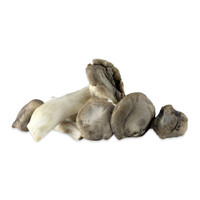Fresh King Oyster Mushrooms