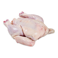 One whole raw poussin (young chicken) fryer